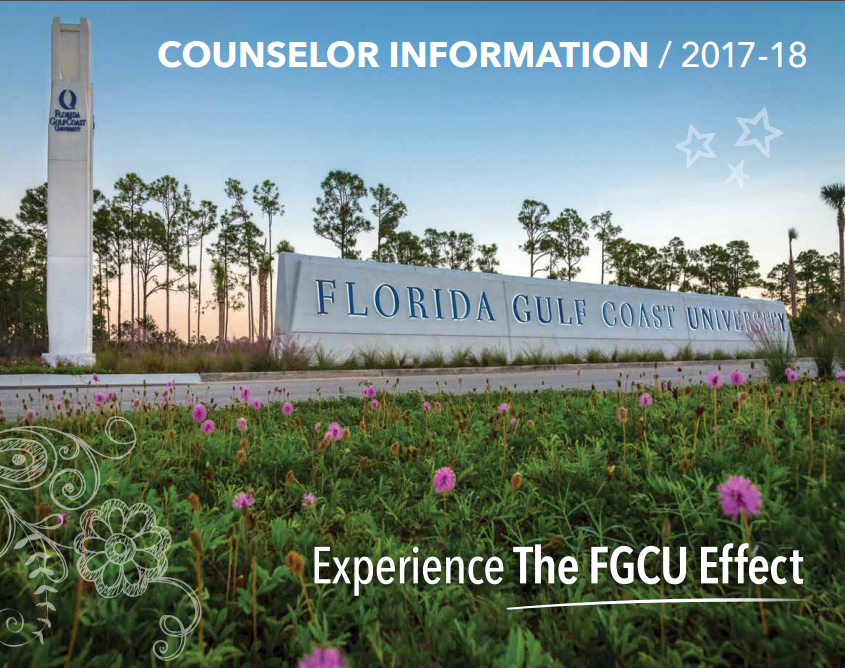 Counselor Information Brochure Thumbnail