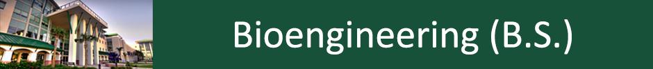 Bioengineering (B.S.)