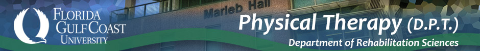 Physical Therapy (D.P.T)